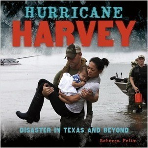 Cover: Hurricane Harvey: Disaster in Texas and Beyond