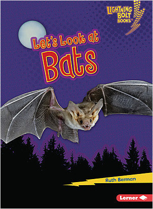 Cover: Let's Look at Bats