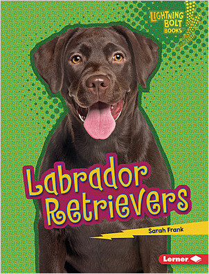 Cover: Labrador Retrievers