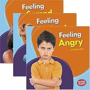 Cover: Bumba Books ™ — Feelings Matter — Audisee®—On Level Set