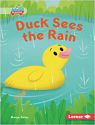 Cover: Duck Sees the Rain