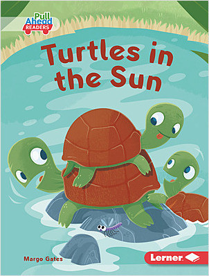 Cover: Turtles in the Sun
