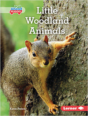 Cover: Little Woodland Animals