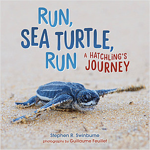 Cover: Run, Sea Turtle, Run: A Hatchling's Journey