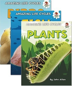 Cover: Amazing Life Cycles — Library Bound Set