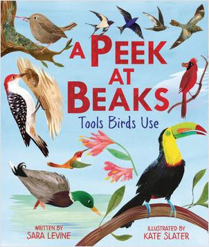 Cover: A Peek at Beaks: Tools Birds Use