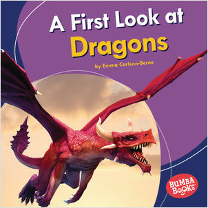Cover: A First Look at Dragons