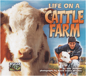 Cover: Life on a Cattle Farm