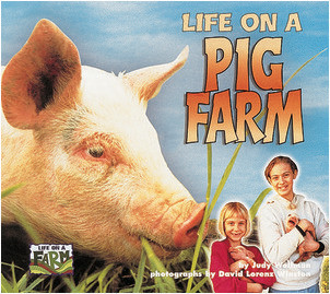 Cover: Life on a Pig Farm