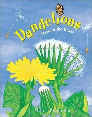 Cover: Dandelions: Stars in the Grass