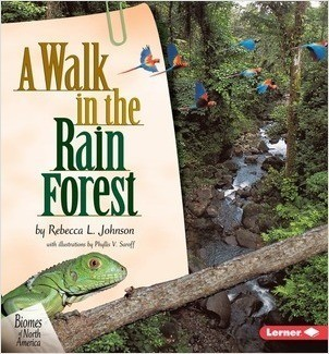 Cover: A Walk in the Rain Forest
