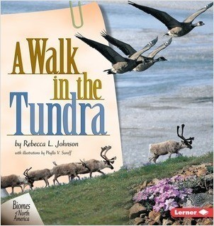 Cover: A Walk in the Tundra