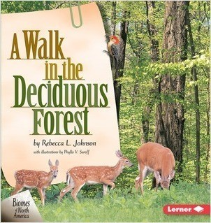 Cover: A Walk in the Deciduous Forest