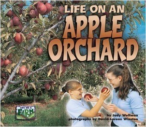 Cover: Life on an Apple Orchard