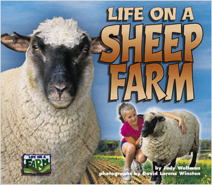 Cover: Life on a Sheep Farm