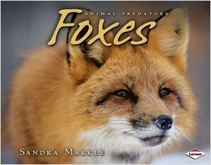 Cover: Foxes