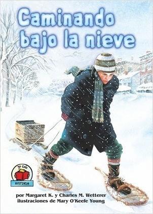 Cover: Caminando bajo la nieve (The Snow Walker)