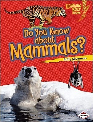 Cover: Lightning Bolt Books ™ — Meet the Animal Groups — Interactive Books Set
