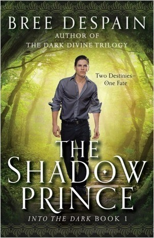 Cover: The Shadow Prince