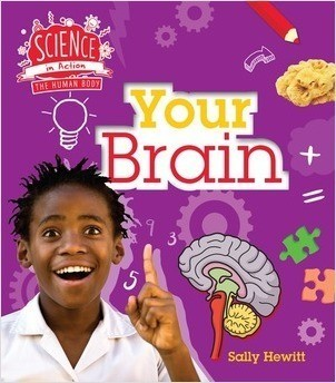 Cover: Your Brain
