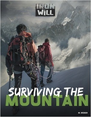 Cover: Surviving the Mountain