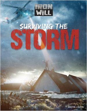 Cover: Surviving the Storm