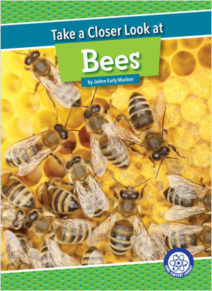 Cover: Take a Closer Look at Bees