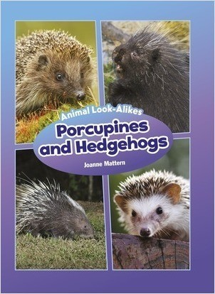 Cover: Porcupines and Hedgehogs