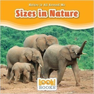 Cover: Sizes in Nature