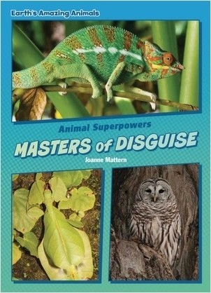 Cover: Masters of Disguise