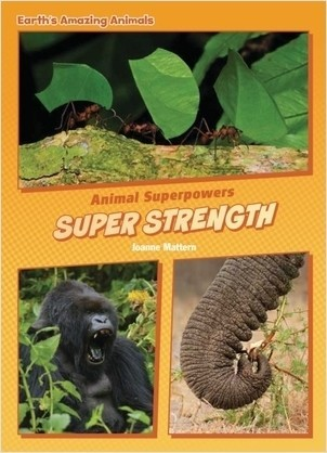 Cover: Super Strength