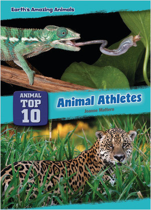 Cover: Animal Athletes