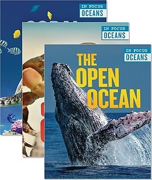 Cover: In Focus: Oceans — Library Bound Set