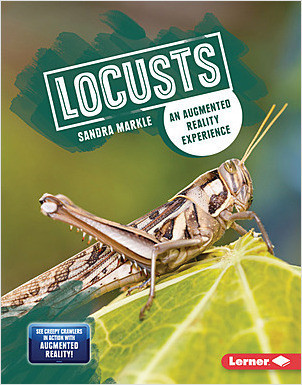 Cover: Locusts: An Augmented Reality Experience