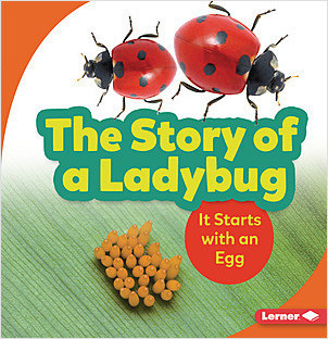 Cover: The Story of a Ladybug: It Starts with an Egg