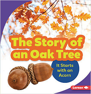 Cover: The Story of an Oak Tree: It Starts with an Acorn
