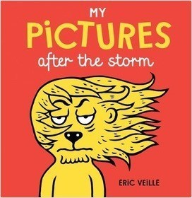 Cover: My Pictures after the Storm