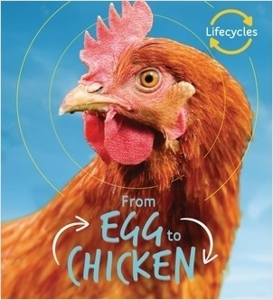 Cover: From Egg to Chicken