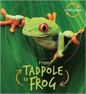 Cover: From Tadpole to Frog
