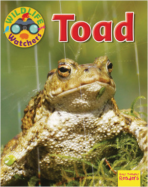 Cover: Toad