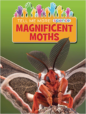 Cover: Magnificent Moths