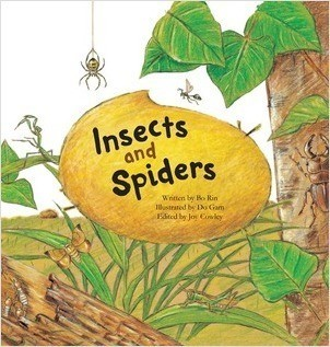 Cover: Insects and Spiders: Insects and Spiders
