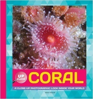Cover: Coral: A Close-up Photographic Look Inside Your World