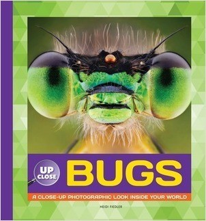 Cover: Bugs: A Close-up Photographic Look Inside Your World