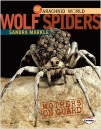 Cover: Wolf Spiders: Mothers on Guard