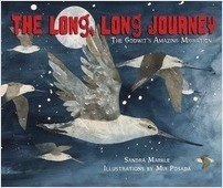 Cover: The Long, Long Journey: The Godwit's Amazing Migration