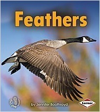Cover: Feathers