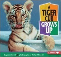 Cover: A Tiger Cub Grows Up