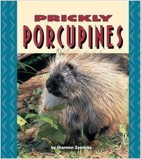 Cover: Prickly Porcupines