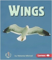 Cover: Wings